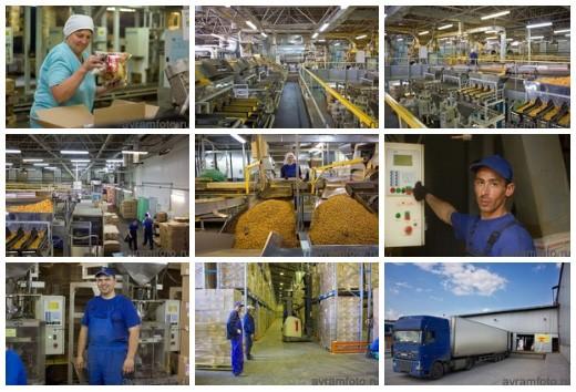 Завод сухариков