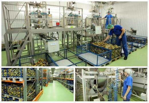 Руско, завод сухариков